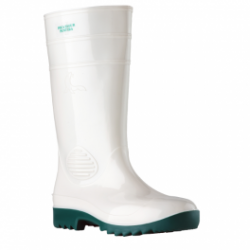 PAIR OF WATER BOOT WITH POINT