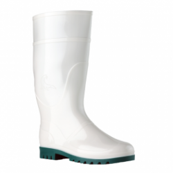 PAR BOOT WATER WITHOUT POINTER